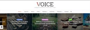Voice WordPress Teması