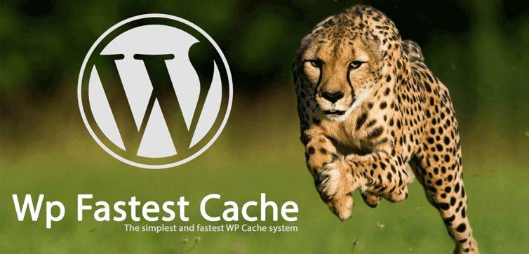Wp Fastet Cache