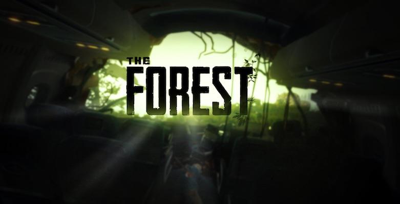 the forest hile kodları nereye yazılır