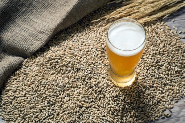 Mayasına Göre Bira Çeşitleri