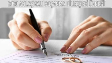 2020 anlaşmalı boşanma dilekçesi örneği